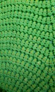ICE show green peeps