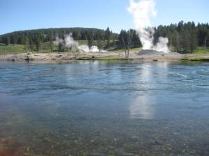another Yellowstone geyser