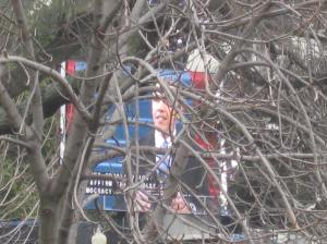 It was easier to watch the President on a large screen through another tree.