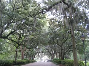 There is the path to enlightenment; the path to an art-committed life; and the path to Forsyth Fountain in Savannah, Georgia. I enjoyed this last path on my cross-country U.S. road trip.