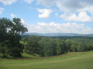Since Elizabeth Spann Craig lives in North Carolina, I'm including a photo I took there on my cross-country road trip. This is the modest view George Vanderbilt had of the Asheville countryside in his Biltmore estate.